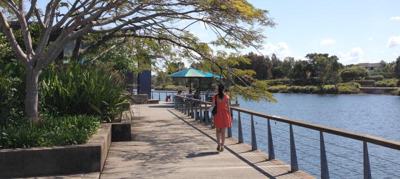 Boardwalk Lake Eden
