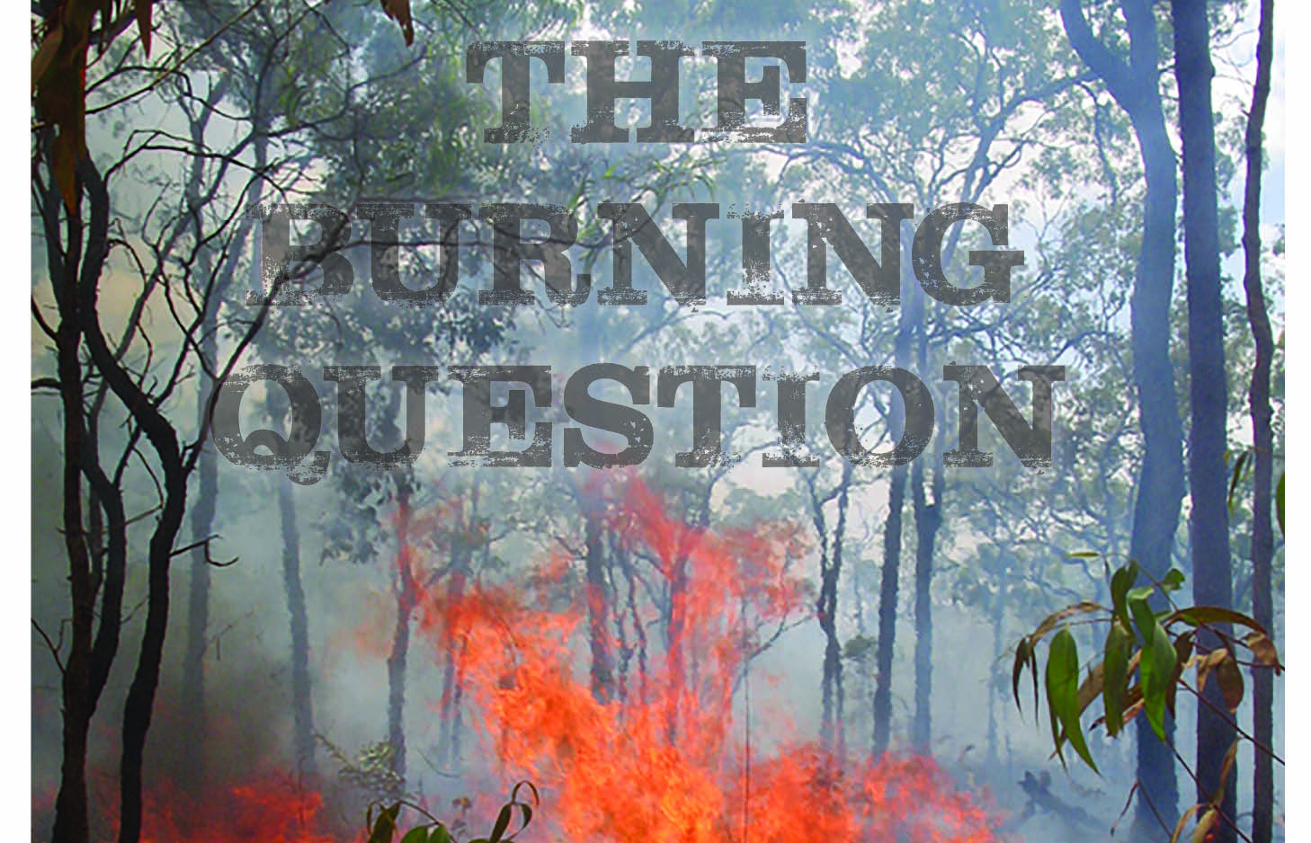 The-Burning-Question