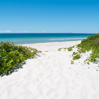 Ocean-Beach-Camping-Area