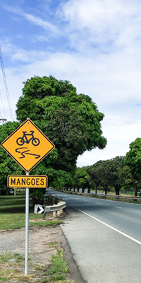 Mango-trees-heritage-listed-Mango-Hill