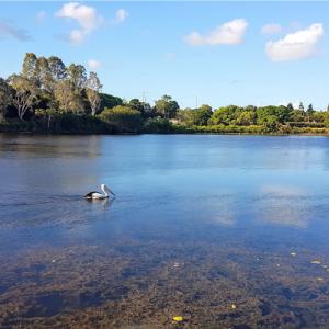 Moreton-Bay-Regional-Council-budget-2018-2019