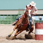 QSEC-rodeo