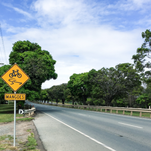 You-Can't-Cut-Down-Our-Mango-Trees-Moreton-Bay-Regional-Council