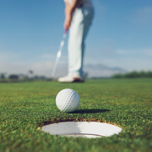 save-north-lakes-golf-course-article